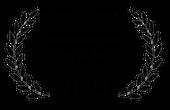 Festivercine 2003